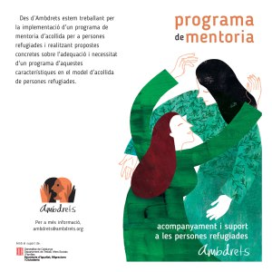 Programa de mentoria amb Ambdrets