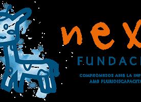 Nexe Fundació cerca responsable de comunicació