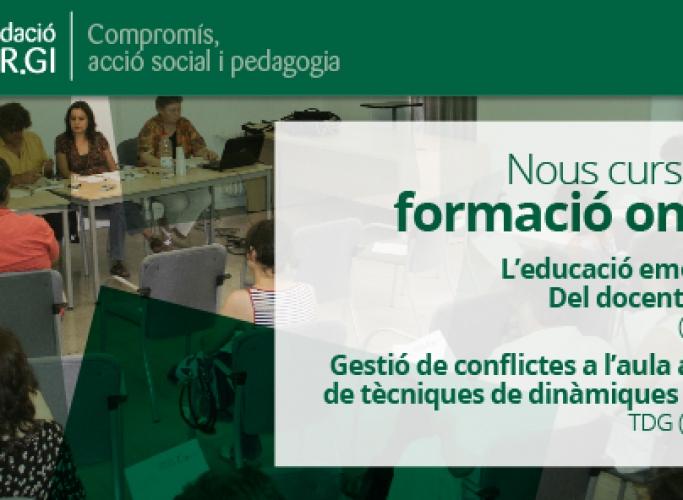 Cursos de formació online per a docents, Fundació SER.GI