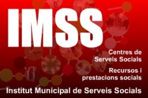 Logotip de l'IMSS