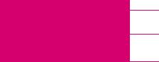 Logo Vicky Bernadet