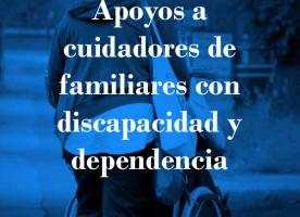 'Apoyos a cuidadores de familiares con discapacidad y dependencia', publicació d'Apip-Acam