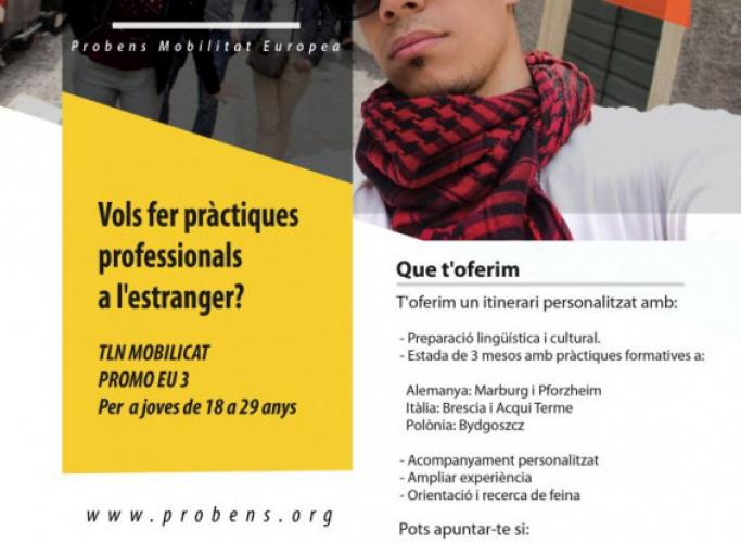 Programa de pràctiques a l'estranger TLN-PROMO.EU3