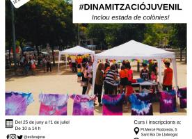 Inscripcions obertes per al Curs de Dinamització Juvenil de Marianao