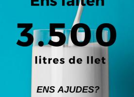 Recollida de llet i testament solidari a Lleida