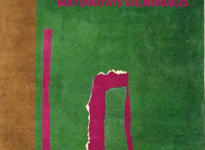 Jornada 'Maternitats vulnerables', 9 de novembre